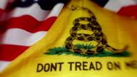 Gadsden flag - Dont Tread on Me video