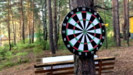 game Darts in the woods video