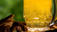 Game of Bubbles in a Glass of Beer video