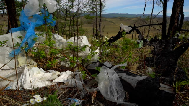 Garbage dump in the forest, environmental pollution, forest, trees. video