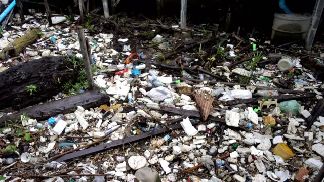 garbage on shore in mangroves, Samut Prakan, Thailand. video