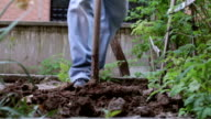 garden digging video