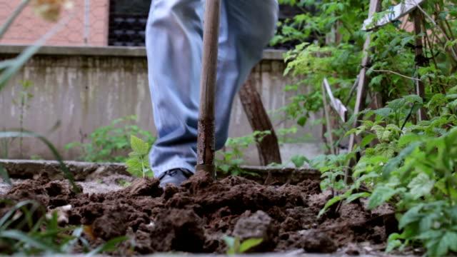 garden digging video