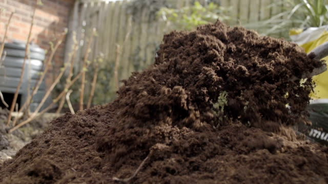 Garden Fork Digging A Veggie Patch With Compost In Spring video
