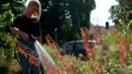 Garden hose girl video