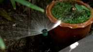Garden irrigation system watering tree (Slow motion shot) video