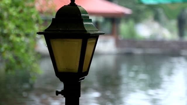 Garden lamp next to a pond video