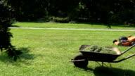 garden landscaper mowing lawn grass in his garden yard with mower video