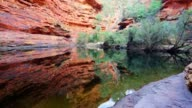 Garden of Eden Waterhole at Kings Canyon, Northern Territory, Australia video