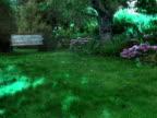 PAL: Garden video