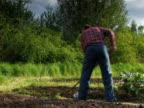 PAL: Garden Work video