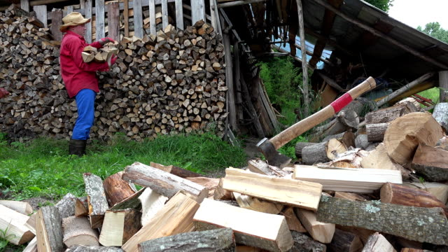 Garden worker man guy stack chopped firewood near woodshed. FullHD video