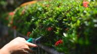 Garden working video