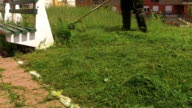 Gardener at work, mowing grass and vegetation. Park and street maintenance. video