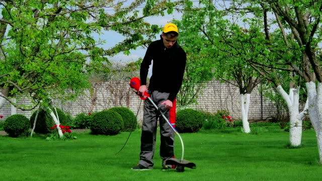 Gardener cutting grass with trimmer video
