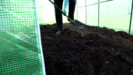 Gardener dig ground in greenhouse and check soil fertility video
