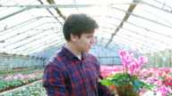 Gardener examining flowerpot in gardenhouse FullHD video