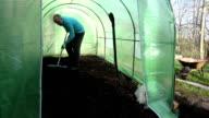 Gardener man level soil with raker tool in hothouse. FullHD video