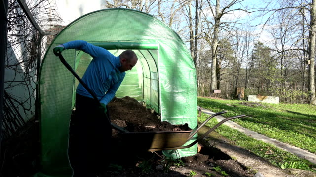 gardener man unload rotten compost to greenhouse from barrow. video