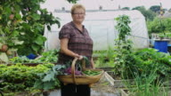 Gardener Posing with Basket of Produce video