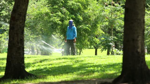 gardener preparing  automatic watering system video