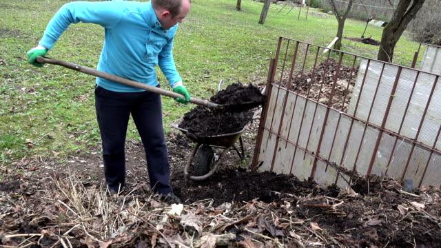 gardener with pitchfork load rotten compost humus to barrow video