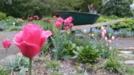 Gardening. video
