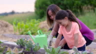 Gardening with Mom video