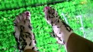 Garra Rufa fishes video