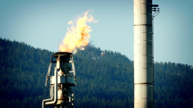 Gas Flames From Huge Refinery Pipe video