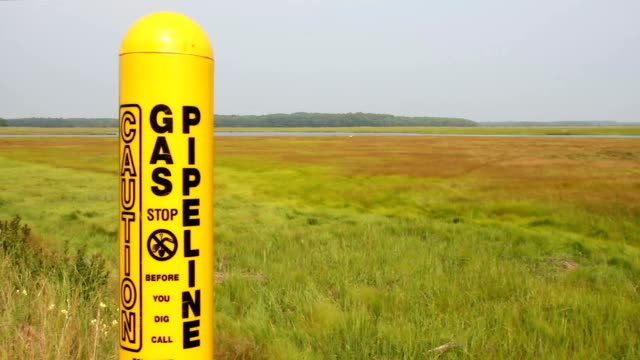 Gas pipeline in natural wetland, Scarborough, Maine video