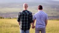 Gay Couple Holding Hands video