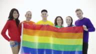 Gay pride group standing in unity holding gay pride flag video