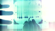 DNA genetic analysis results video