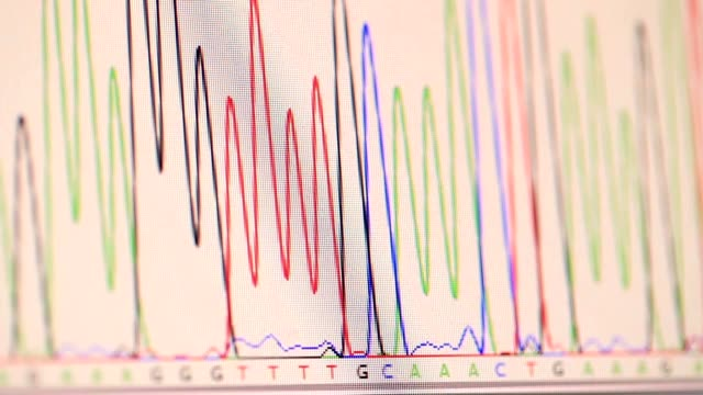 genetic chromatogram on a computer screen video