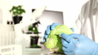 Genetic Research Lab - Food video