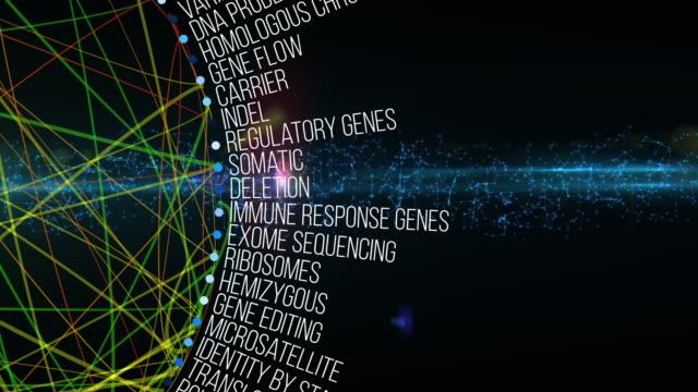 Genetic Terms video