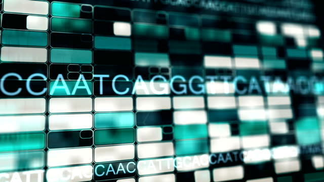Genome DNA sequence in perspective 3D view video