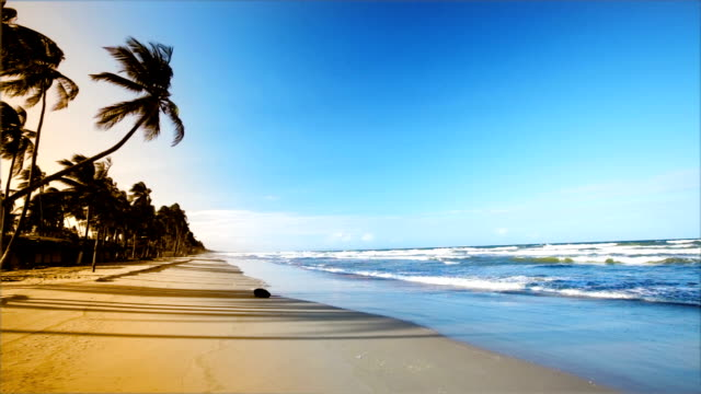 HD Gentle waves on Caribbean island beach at sunset video
