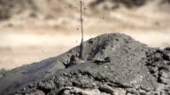 Geothermal Mud Volcano video
