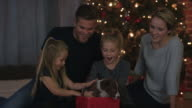 Getting a Puppy for Christmas video