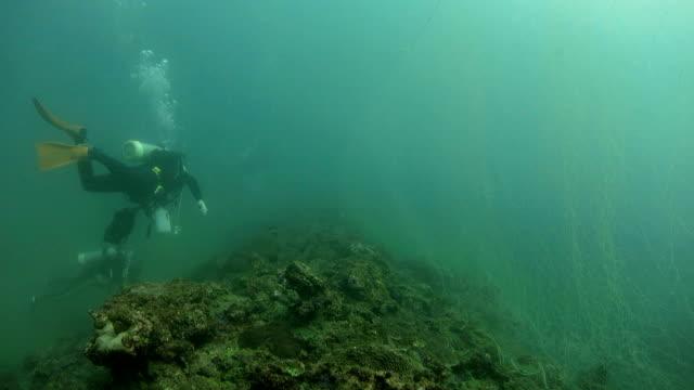Ghost fishing net underwater video