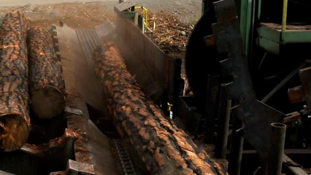 Giant Saw Blade Cuts Through Log video