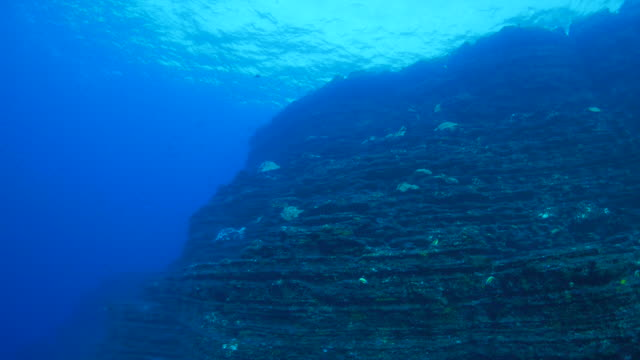 Giant undersea rock, Mexico video