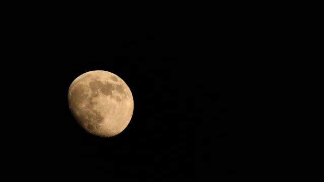Gibbous moon rising up until exit night sky HD Video video