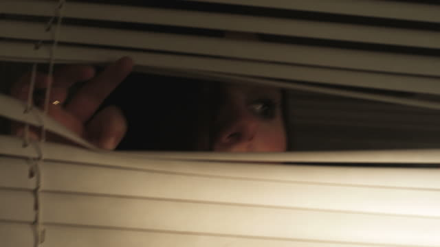 HD CRANE: A girl appears behind some blinds video