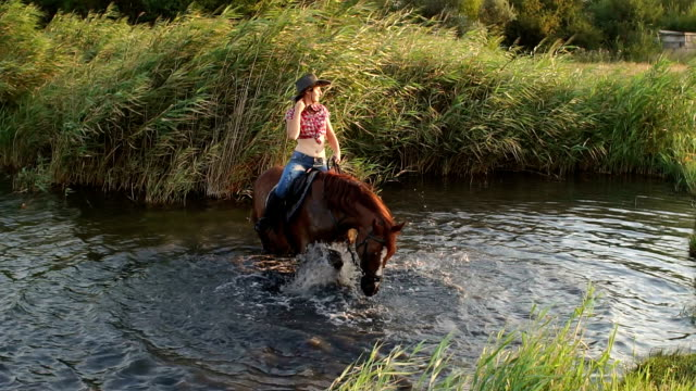 Girl bathes her horse in the lake on a summer day. video