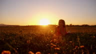 Girl blowing dandelions in meadow at sunset video