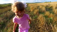 Girl child running across the field. On the field, the wheat harvest is already gathered. The camera with  steadicam  moves after  little girl video