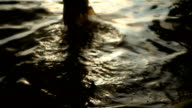 girl disappearing into the sea at sunset video